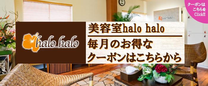 静岡にあるエスアンドエフ美容室、美容院halohaloハロハロクーポンベース