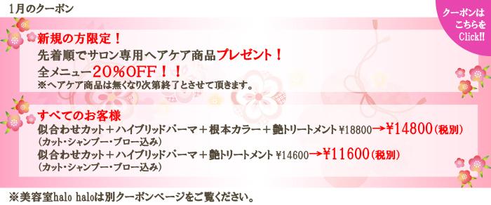 静岡にあるエスアンドエフ(S&F)美容室、美容院のクーポン2017年1月毎月お得なクーポン
