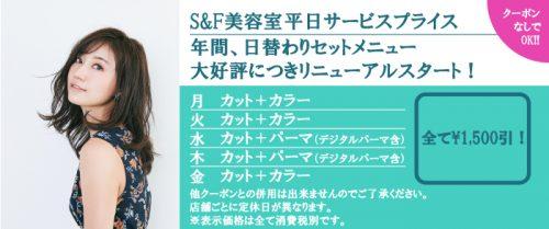 静岡にあるエスアンドエフ(S&F)美容室の平日サービスプライス
